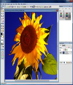 PhotoLine v21.01 + key