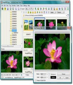 FastStone Photo Resizer 3.9 Corporate + keygen