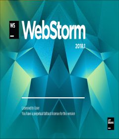 JetBrains WebStorm 2018.3.4