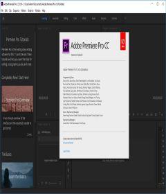 Adobe Premiere Pro CC 2019 v13.0.3.9 - PreCracked