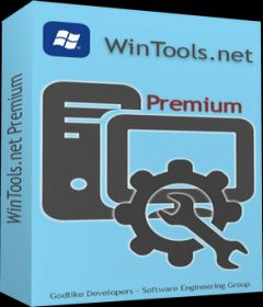 WinTools net Professional & Premium v19.3 + keygen