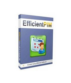 Efficient Efficcess Pro 5.60 Build 546 + serial key