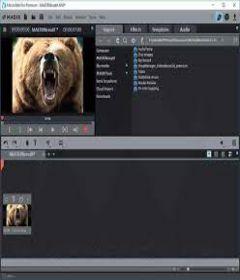 Magix Movie Edit Pro 2020 Premium 19.0.1.18 with Patch