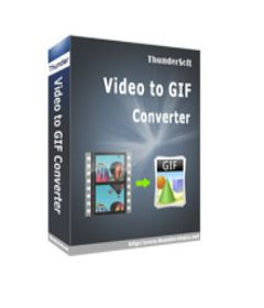 ThunderSoft GIF Converter incl patch
