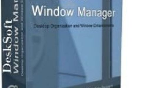 WindowManager Patch