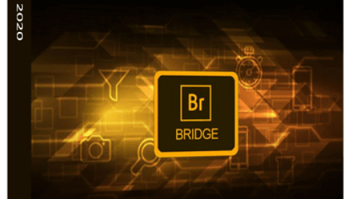 Adobe Bridge 2020 v10.0.4.157 [Pre-activated]