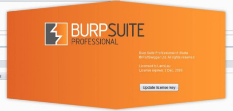 Burp Suite Professional incl patch download