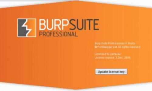 Burp Suite Professional incl Loader