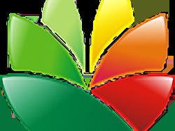 EximiousSoft Logo Designer Crack