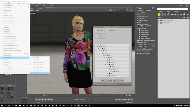 Smith Micro Poser Pro 11 Crack With Keygen 2018