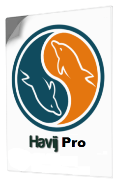 Havij Pro 1.17  SQL Injection Tool latest version cracked free Download