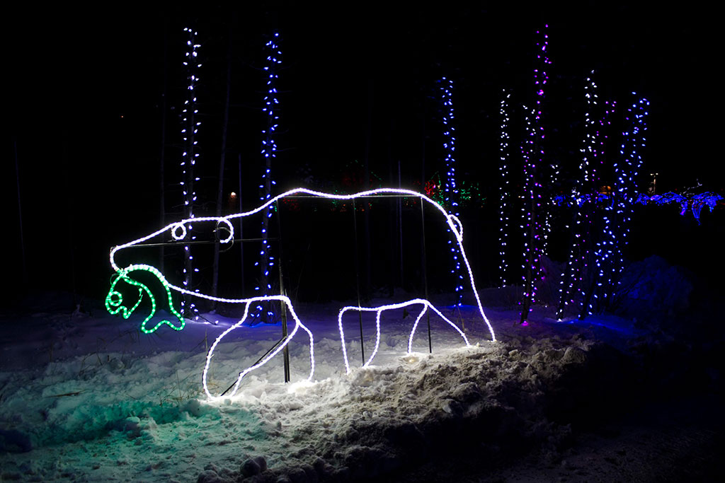 Calgary Zoo ZOOLIGHTS Polar Bear