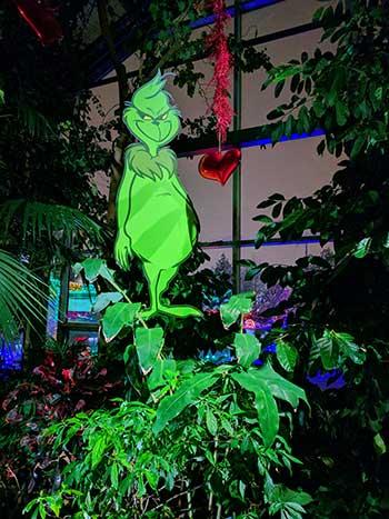 Calgary Zoo Lights Grinch