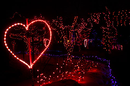 Calgary Zoo Lights