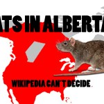Are there rats in Alberta?  Wikipedia can't decide.