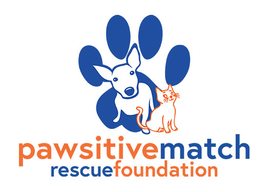 Pawsitive Match Amazon Wishlist