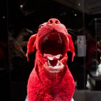 TELUS Spark: BODY WORLDS Animal Inside Out – Guide (2019) (CONTEST!)