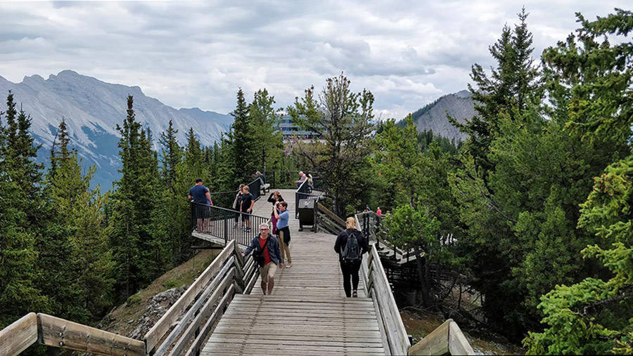 Guide To The Banff Gondola skywalk boardwalk in the summer time 2018