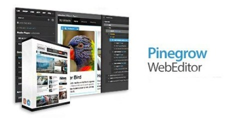 Pinegrow Web Editor 6.0 Crack + Activation Code 2021 [Full Version]