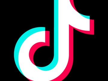 In defense of TikTok, the joyful, slightly cringe-inducing spiritual successor to Vine - The Verge