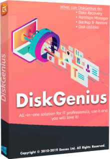 DiskGenius Professional