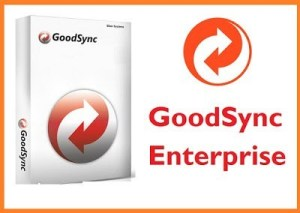 GoodSync 10.9.32 Crack