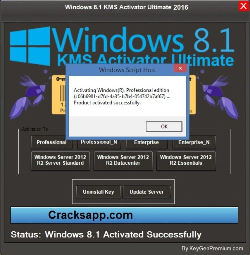 Windows 8.1 Activator 2016 Free Download