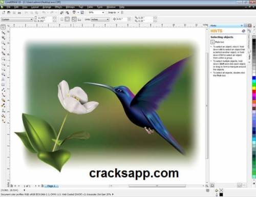 Corel Draw X5 Serial Number Free Download