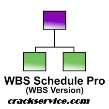 WBS Schedule Pro Crack With Torrent 2020 (New)
