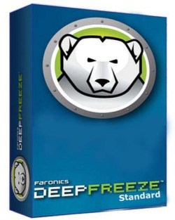 Deep Freeze Standard 8.53 License Key