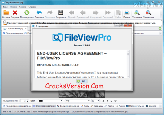 FileViewPro License Key with Crack Download