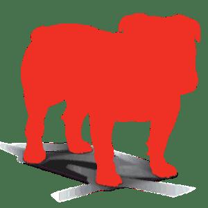 Bullguard Antivirus Crack + Keygen {Updated} Free Download