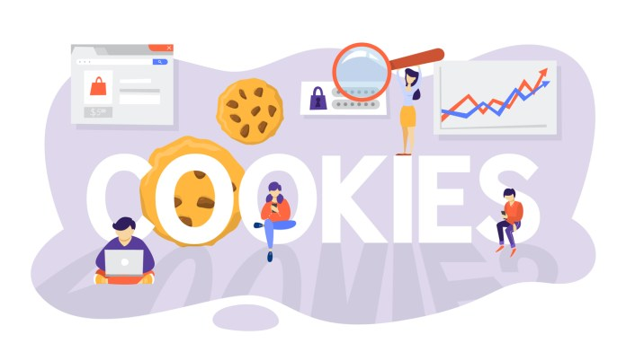 Internet without Third-Party Cookies - Craffic