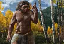 Ancient Skull Belonging to 'Dragon Man,' Can be Our Closest Relative