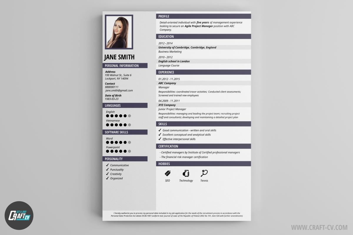 cv sample ready to fill sample customer service resume cv sample ready to fill cv sample ready to fill example of resume for job cv