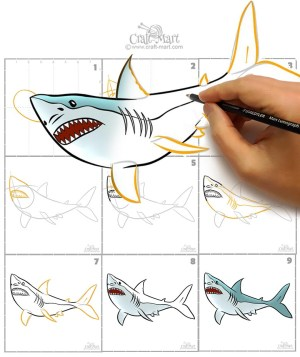 draw shark step easy craft mart steps drawing