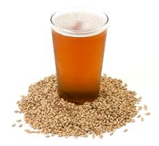 beer_barley_web