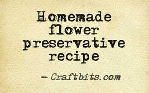 Home Made Flower Preservative