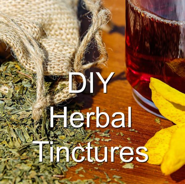 Herbal Tinctures – Basics