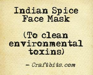 Indian Spice Face Mask