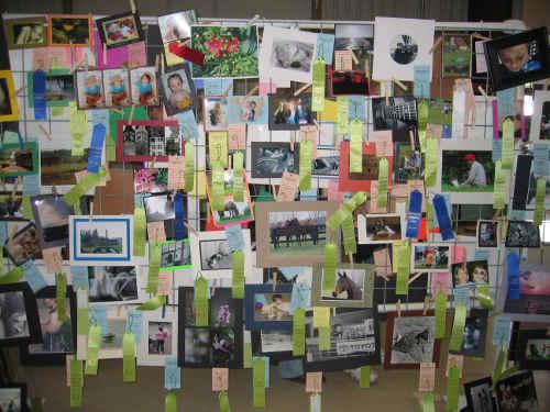 Photo Organization