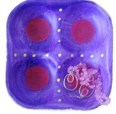 Styro Foam Tray Plate