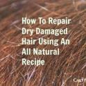 Dry Damaged Hair Repair