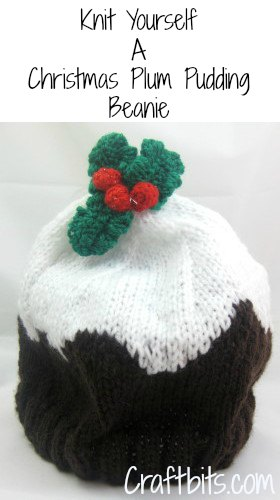 Knitted Sweater Patterns Free : Adult Beanie - Christmas Plum Pudding - Christmas Crafts - craftbits.com