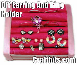 DIY Earring and Ring Holder