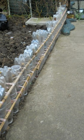 Recycled Plastic Bottle Fence