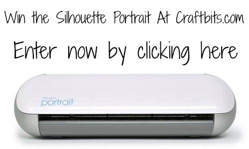 Win the Silhouette Portrait