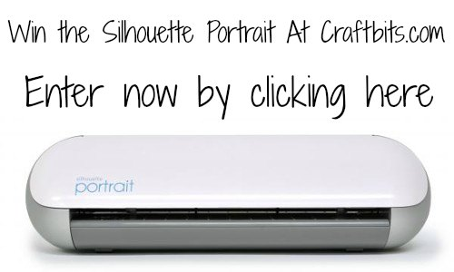 Win the Silhouette Portrait