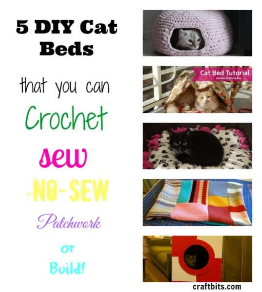 5 Very Clever Cat Beds