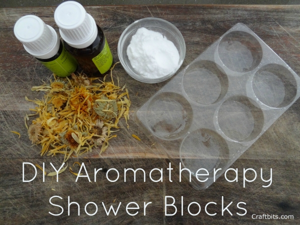 DIY Aromatherapy Shower Blocks